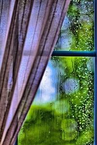 logs_lietus