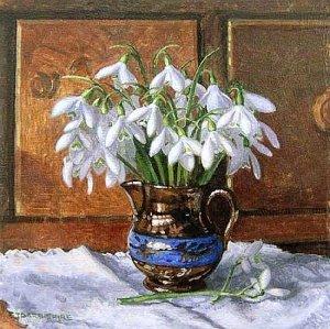 Stephen Darbishire (1940) Snowdrops